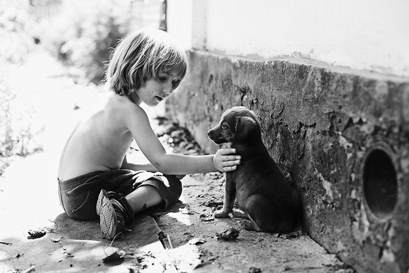 Мальчик заглянул в зоомагазин и увидел хромого щенка…