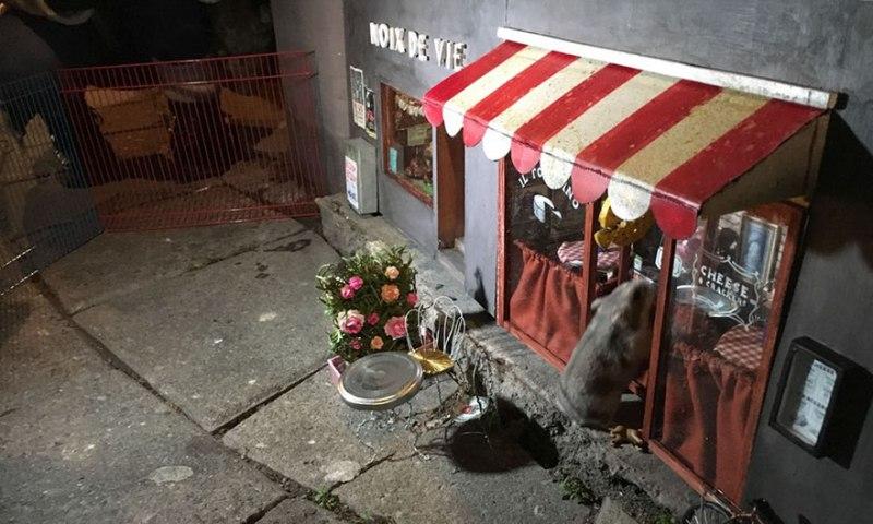 Самый маленький магазин в мире!