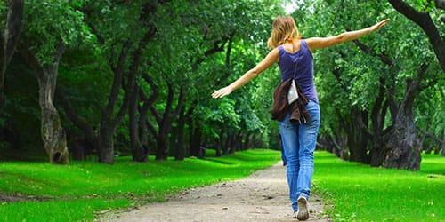 Сонник гулять по лесу к чему снится гулять по лесу во сне?