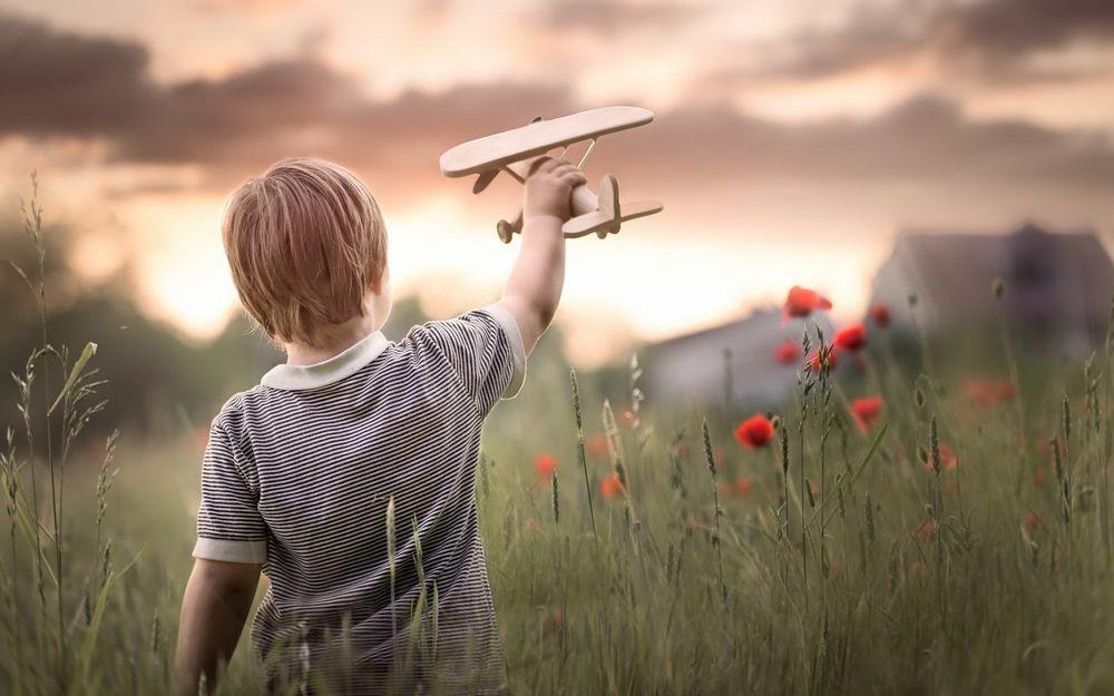 Обои Мальчик играет с игрушечным самолетиком на маковом поле на ...