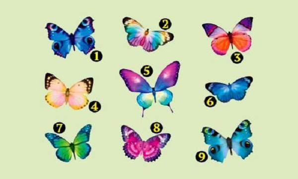 Тест: Выберите бабочку и узнайте, что Вас ждёт